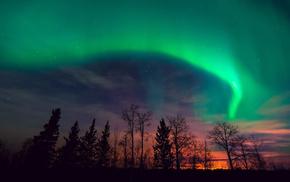 Ночь, северное сияние, закат, деревья, звезды, природа