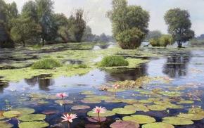 пруд, отражение, цветки, красивые, картина, лотос