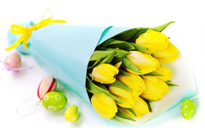 tulips, flowers, bouquet