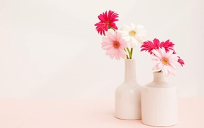 vase, background, bouquet, flowers