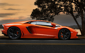 cars, tree, orange, Lamborghini, sky