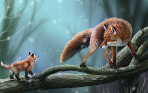 animals, fox, snow, tree, branch
