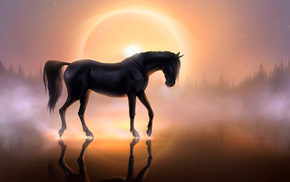 sunset, horse, reflection, water, forest