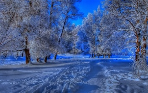 снег, голубой, зима, дорога