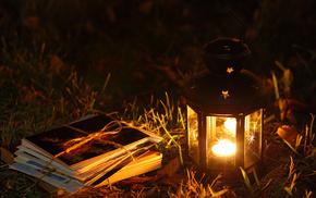 flame, grass, stunner, candle, light