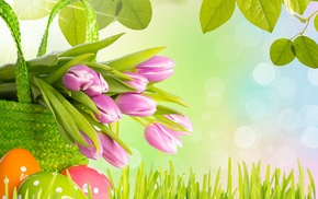 flowers, tulips, grass, spring, leaves