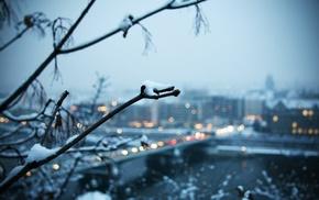 winter, trees, city, landscape, snow, depth of field