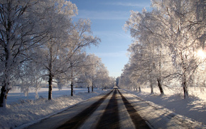зима, снег, мороз, дорога, деревья