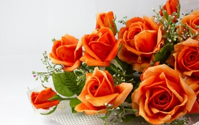 orange, color, flowers, bouquet, roses