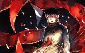 Tokyo Ghoul, Kaneki Ken, anime boys
