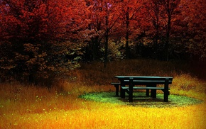 landscape, colorful, trees, bench, fall, nature