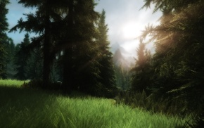 The Elder Scrolls V Skyrim, ENB
