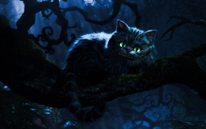 Cheshire Cat, cat, Alice in Wonderland