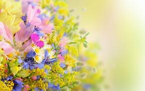 bouquet, summer, flowers