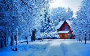 snow, trees, winter, lodge, landscape