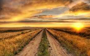 road, HDR, sunset, nature