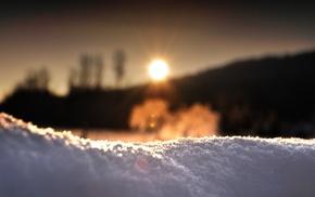 глубина резкости, солнце, зима, снег