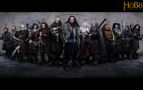 movies, Thorin Oakenshield, dwarfs, The Hobbit An Unexpected Journey