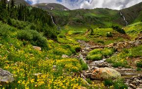 flowers, creek, mountain, grass, nature