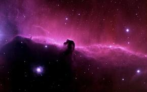 space, Horsehead Nebula