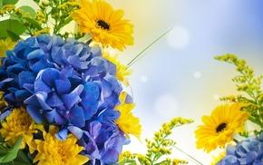 wallpaper, bouquet, stunner, petals, light