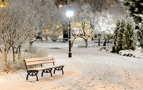 trees, park, nature, evening, bench
