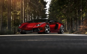 Lamborghini, cars, forest