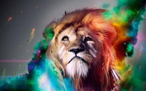 animals, lion, light