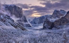 mountain, snow, nature, trees