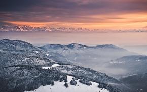 деревья, альпы, горы, Зима, снег, туман