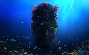 coral, digital art, sunlight, underwater, fish, face