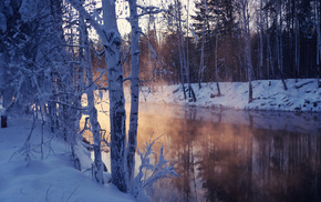 snow, nature, lake, trees, winter