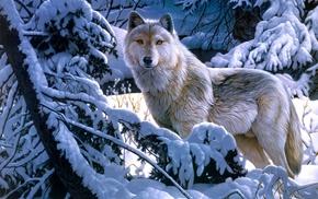animals, wolf, snow, winter, forest