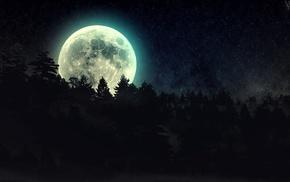 звезды, ночь, лес, луна