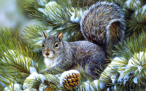 animals, snow, squirrel