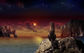 sunset, stars, rocks, stunner, sea