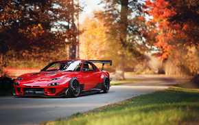 red, sportcar, cars, autumn, auto