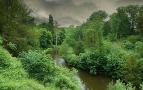 river, nature, green, forest, gray