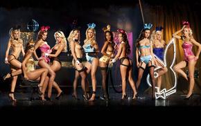 ушки, чулки, beautiful, сиськи, девушки, naked