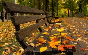 pavements, fall, leaves, bench
