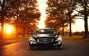 black, sportcar, trees, nature, sunset