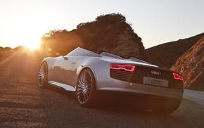 Audi, Spyder