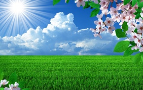 photoshop, Sun, spring, sky, flowers