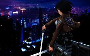 аниме, Mikasa Ackerman, девушки из аниме, манга, фантастическое исскуство