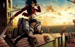 Shingeki no Kyojin, Mikasa Ackerman
