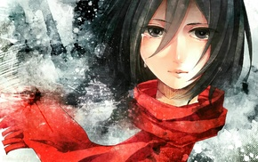 девушки из аниме, Mikasa Ackerman, аниме