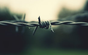 wire, barbed wire, depth of field