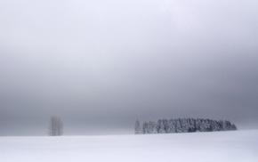 синий, белый, зима, природа, небо