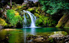 nature, moss, waterfall, trees, stones