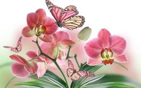 white, background, flowers, stunner